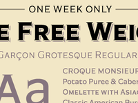 Promo: A Free Weight of Garçon Grotesque!