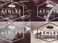 Ashley Options