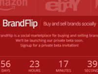 BrandFlip - Private beta signup page