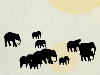 Elephants_for_dribbble