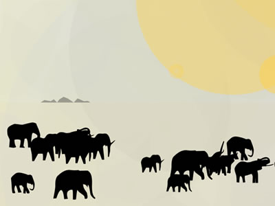 Elephants_for_dribbble_2