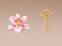 The Key and Lily