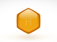Project Honey OS