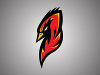 Firebird team logo