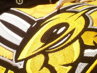 Stingers Jersey Embroidery