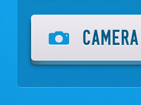 Camera Roll Button
