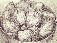 Sketch of a bowl with strawberries