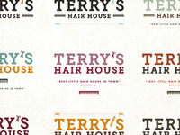 Terry's Hair House Logo Options