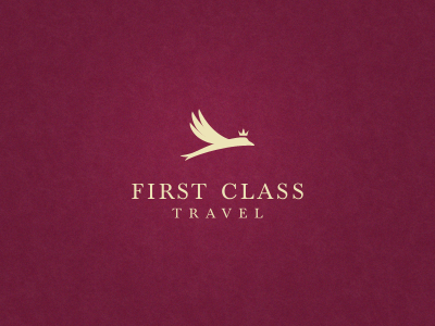 Firstclasstravel_dribble2