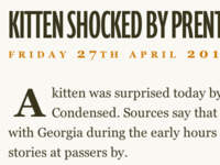 Kitten Shocked By Prenton