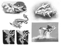 Draco marina (further thumbnails)