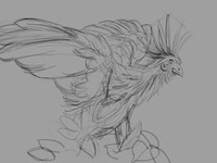 Hoatzin Study (digital lay-in)