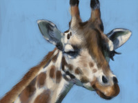 Giraffe Study (1st color pass)
