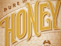 Apis Hive :: Honey Logotype :: Zoom