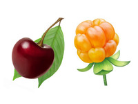 Cherry and cloudberry