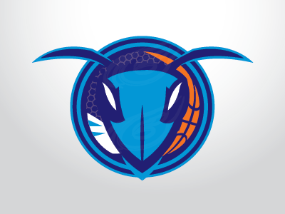 hornets_3.png