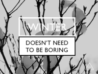 Not boring winter