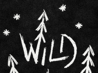 Wild_nothing_dribbble_01_teaser