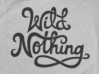 Wild_nothing_dribbble_04_teaser