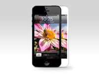 iPhone 5 Front View PSD Download