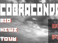 Cobraconda Website