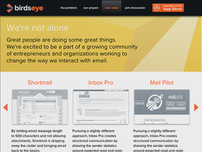 Birdseye Website