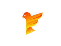 Little Bird Logo Design