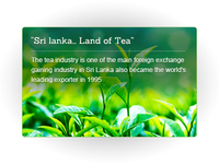 Sri Lanka.. Land of Tea