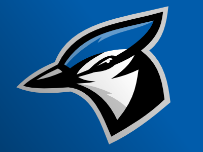 Blue_jays_dribbble_presentation