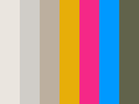 Website Color Palette