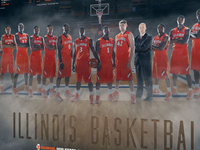 2012-13 Illinois Men's Basketball Poster