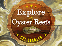 Explore the Oyster Reef