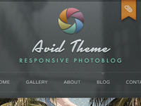 The Theme Foundry Photo Theme