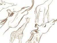 Giraffe_sketch_dribbble_teaser