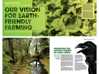 Rainforest Alliance annual report