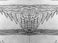 Owl_sketch_shot_teaser