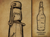 Anatomy Amber Beer Label