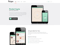 Perigee Website Design