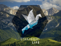 Strategic Life