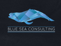 Blue Sea Consulting