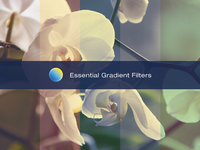 Essential Gradient Filters