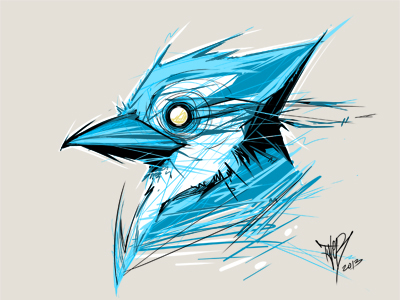 quick bluejay on the cintiq by tyleR coey