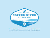 Copper River Salmon Run