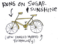 sugar & sunshine bike