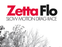Zetta Flo logotype & album cover