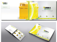 Product Catalogue for Lemon-X Batteries