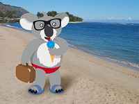 Koala on holiday