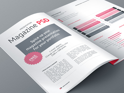 Download Free Magazine Presentation PSD