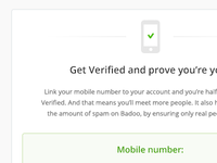 get verified intro screen