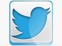 Download New Twitter Button